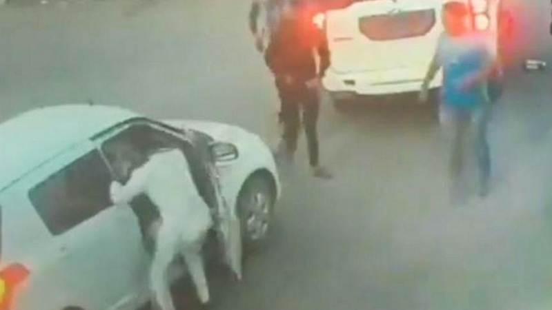 VIDEO:भाजप आमदारपुत्राची कारचालकाला भररस्त्यावर मारहाण