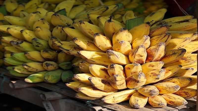 पिकलेल्या केळ्यात पोटॅशियम जास्त असतं. सोडियम कमी असतं.त्यामुळे रक्तदाब नियंत्रणात राहतो. शरीरात पाण्याची कमतरता राहत नाही. शरीराचं मेटॅबोलिजम चांगलं राहतं.