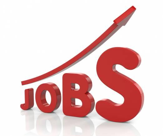 एकीककडे आर्थिक वृद्धी होत असताना पाहिजे तशा नोकऱ्या उपलब्ध होत नव्हत्या. एका संशोधनानुसार भारतात दरवर्षी साधारणपणे १.२ कोटी लोक रोजगाराच्या बाजारात प्रवेश करतात.