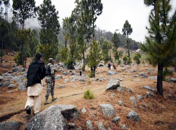 भारतानं हल्ला केल्यानंतरही पाकिस्तान स्वत:ची बाजू सावरून घेतोय. पाकिस्तान म्हणतोय, आमचं काही नुकसान झालं नाही. उलट आमच्या वायुसेनेमुळे विमानांना परत जावं लागलं.