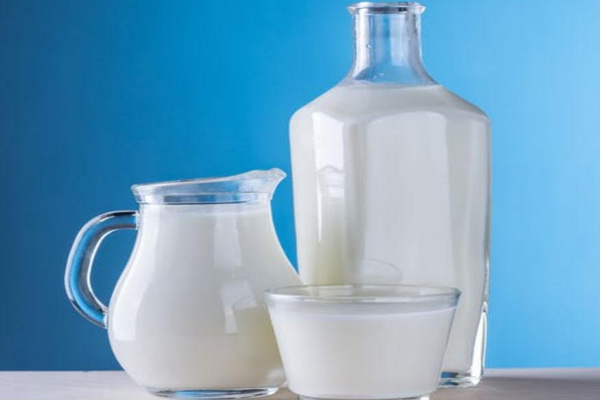 ज्यांना डायबेटिस आहे, ते इन्शुलीनऐवजी उंटिणीचं दूध आहारात समाविष्ट करू शकतात.