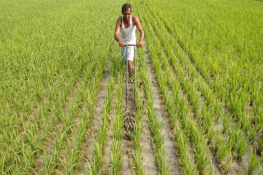 सरकारनं शेतकऱ्यांना दिलेल्या बिनव्याजी कर्जाची मर्यादा 1 लाखावरून 1 लाख 60 हजार केली आहे. ही योजना लागू होण्यासाठी अद्याप वेळ आहे. पण, या कर्जासाठी किसान क्रेडीट कार्ड लागतं ही गोष्ट ध्यानात घ्या.