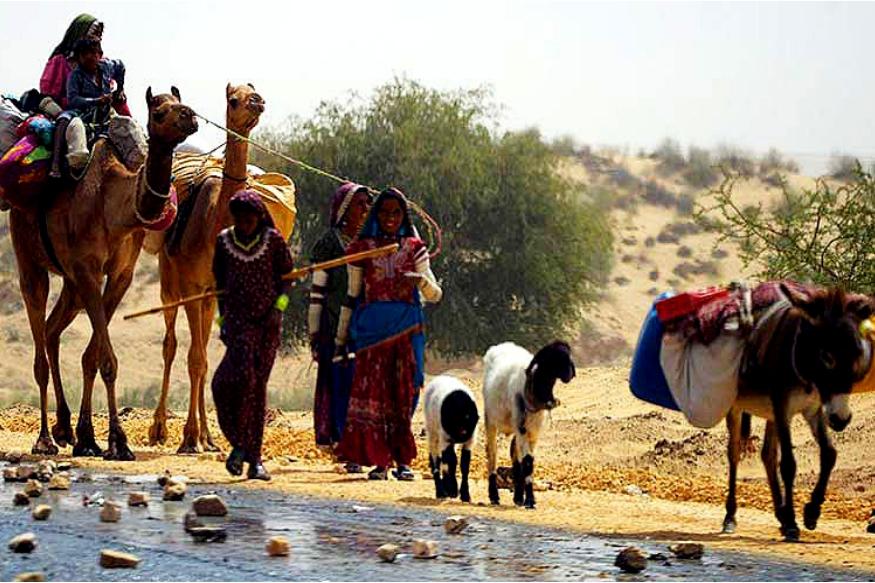 मिठी कराचीपासून 278 किमी दूर आहे. भारताच्या अहमदाबादहून मिठी 341 किमी दूर आहे. इथे वाळवंट आहे. मिठीला 1990मध्ये थारपारकर जिल्ह्याचा भाग बनवलं होतं.( फोटो - हसन रजा, डाॅन )
