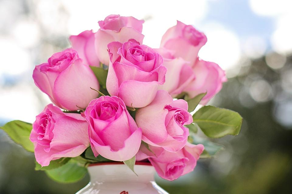 12 गुलाबांचा अर्थ ती व्यक्ती तुम्हाला प्रपोझ करतेय.
