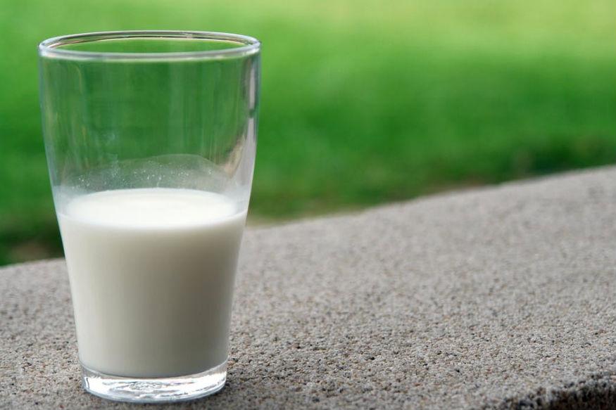 उंटिणीचं दूध डायबेटिससाठी चांगलं मानलं जातं. दुधात इन्सुलीन असतं. या दुधामुळे टाइप 1 आणि 2पासून बचाव होऊ शकतो.