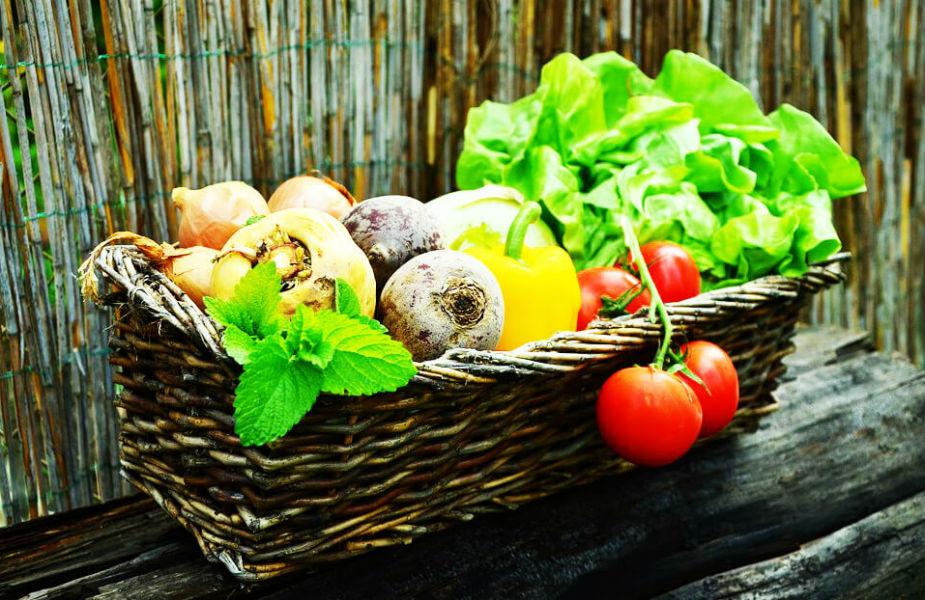 हिरव्या भाज्या खाल्ल्यानं अन्नाचं पचन होतं. हिमोग्लोबिन चांगलं राहातं. कॅलरी जमा होतं नाही. त्यामुळे जाडं होण्याची शक्यता राहात नाही.