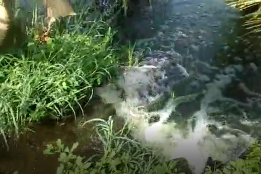 जलसंपदा राज्यमंत्र्यांच्या मतदार संघात 3 महिन्यांपासून वाया जातेय लाखो लिटर पाणी!