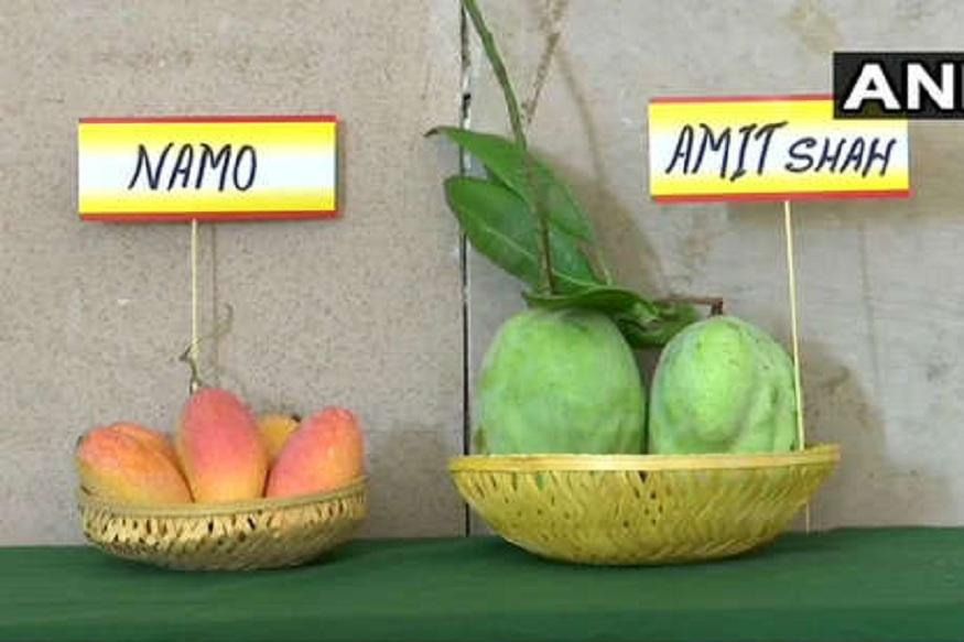 दिल्लीच्या मँगो फेस्टिवलमध्ये नरेंद्र मोदी, अमित शहांची विक्री