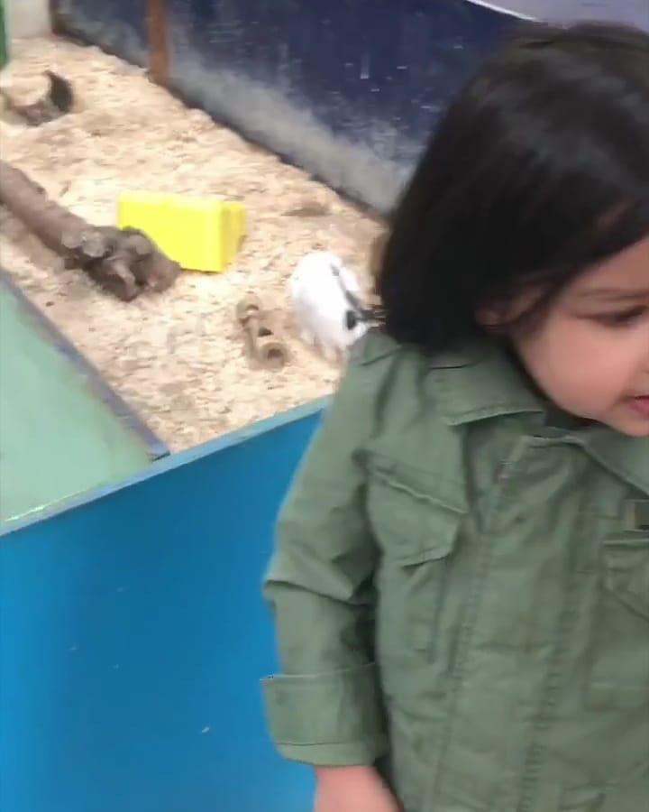 महेंद्रसिंग धोनीची मुलगी झिवा धोनीचं स्वतःचं असं वेगळं स्टारडम आहे. दररोज सोशल मीडियावर तिचे फोटो व्हायरल होत असतात.