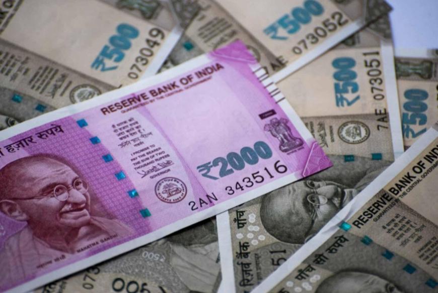 'हा' व्यवसाय करून तुम्ही कमवू शकता दर महिना एक लाख रुपये