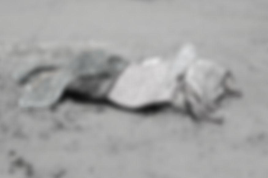 घरातील वाद चव्हाट्यावर! 2 मुलांचा आधार गेला, भर रस्त्यात पेट्रोल ओतून व्यक्तीची आत्महत्या