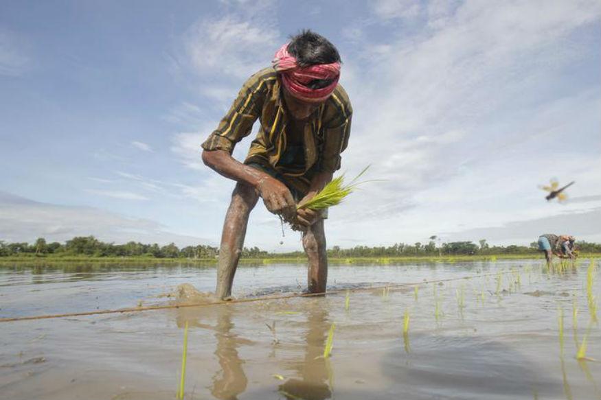 शेतकऱ्यांसाठी मोठी बातमी, राज्यपालांकडून 8 हजार रुपयांची मदत जाहीर