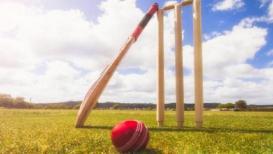 2 धावांवर अख्खी टीम ऑल आऊट;चौका मारून जिंकली दुसरी टीम