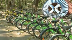 पुणे विद्यापीठातल्या 'स्मार्ट' सायकलीही भुरट्या कर्मचाऱ्यांनी चोरल्या !