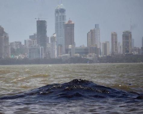 mumbai arbian sea
