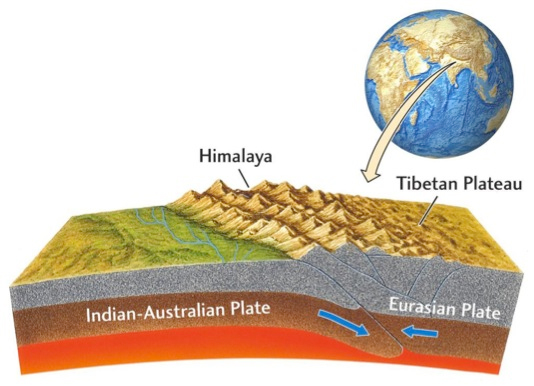 indian plate and eurasian plate