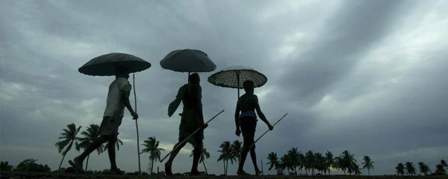 rain inkerla213