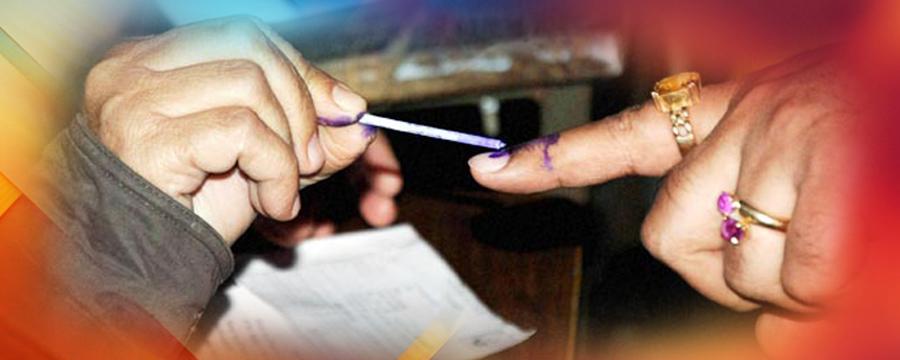 VOTING WEB copy