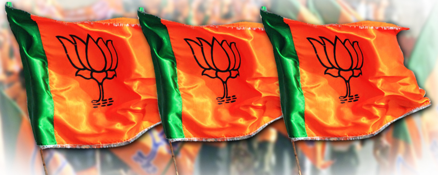 BJP FLAG FOR WAB