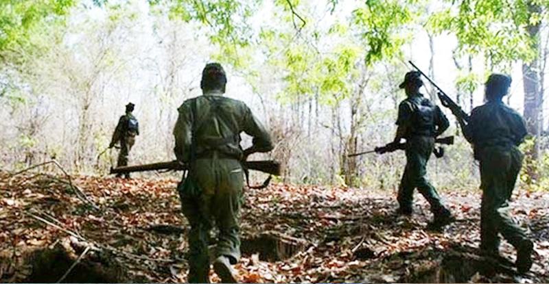 गडचिरोलीत माओवाद्यांच्या भूसुरुंग स्फोटात 12 जवान जखमी