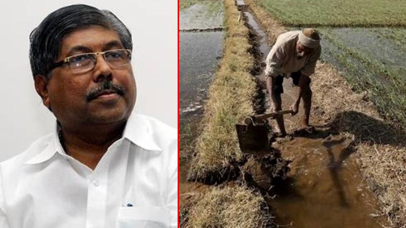 राज्यात 10 लाख कर्जदार शेतकरी बोगस -चंद्रकांत पाटील