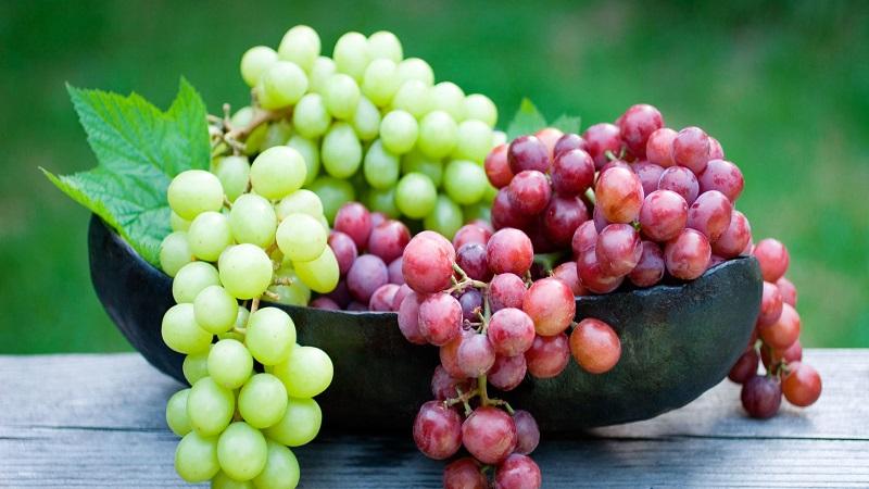 या आजारांवर द्राक्षे 'गोड'! जाणून घ्या फायदे