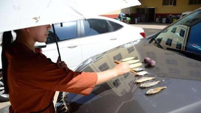 40 डिग्री तापमानात कारच्या बोनटवर फ्राय केले मासे !