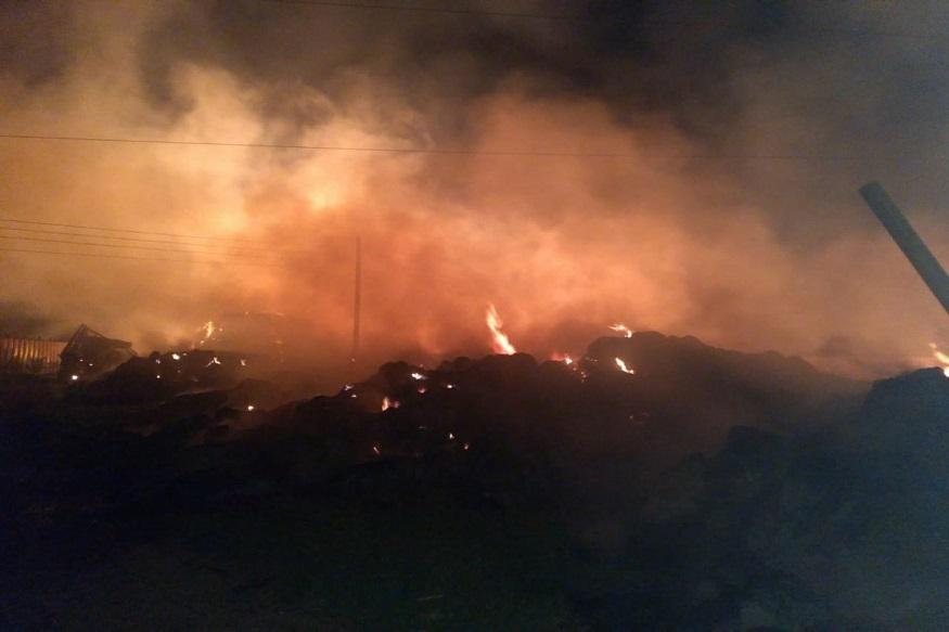 फलटणमध्ये लाकडाच्या कंपनीला भीषण आग, 15 कोटींचं लाकूड जळून खाक