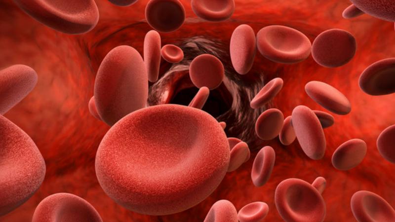 शरीरात जर आयोडीनचं प्रमाण कमी झालं तर त्याचा तुमच्या प्रतिकार क्षमतेवर वाईट परिणाम होतो. जर तुमच्या शरिरात आयोडीनचे प्रमाण कमी झालं तर थायरॉईडची समस्या उद्बवू शकते. थायरॉइडच्या ग्रंथीमध्ये जर आयोडिनचं प्रमाण कमी झालेत तर ते तुमच्या स्वास्थ्यासाठी अत्यंत हानिकारक आहे.