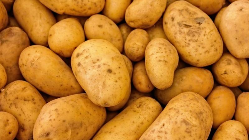 असं म्हंटलं जातं की बटाट्यामध्ये स्टार्च असते. पण तुम्हाला हे माहिती आहे का की त्यामध्येही आयोडीन असतं. एका मध्यम आकाराच्य़ा बटाट्यामध्ये ६० माइक्रोग्रॅम आयोडीनचं प्रमाण असतं. त्यामुळे रोज तुम्ही एक बटाटा खाल्ला तर तुमच्या शरिरात ४० टक्क्याने आयोडीनचंप्रमाण वाढतं.