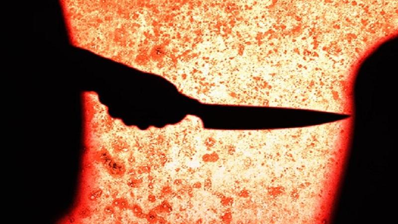 जहांगीरने पायलला लग्नाची मागणी घातली होती तिने नकार दिला म्हणून गळा दाबून हत्या केली आणि कुऱ्हाडीने तिच्या मृतदेहाचे ३ तुकडे करून फाॅर्महाऊसमध्ये पुरले होते.