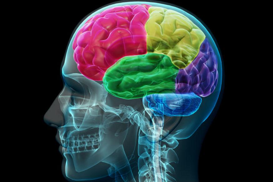 जेव्हा आपण तक्रार करतो तेव्हा मेंदू स्ट्रेस हार्मोन्स बाहेर फेकतं. हे हार्मोन्स neural कनेक्शन्सच्या अशा भागाला नुकसान पोचवतात, जिथे अडचणींना सामना करायचे हार्मोन्स असतात.