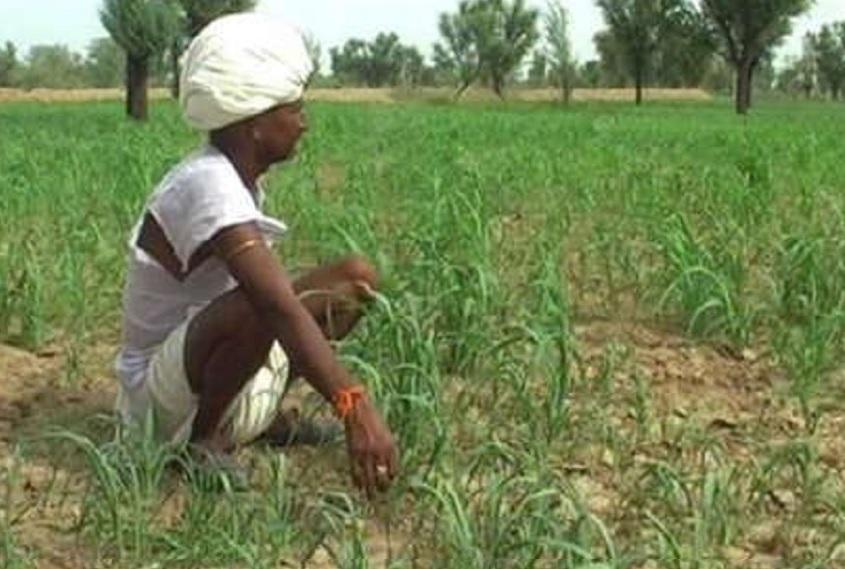 शेतकरी कर्जमाफीबाबत राज्य सरकार घेणार मोठा निर्णय