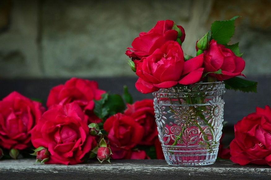 Valentine's Day : गुलाबांच्या संख्येमागे दडलंय प्रेमातलं गुपित