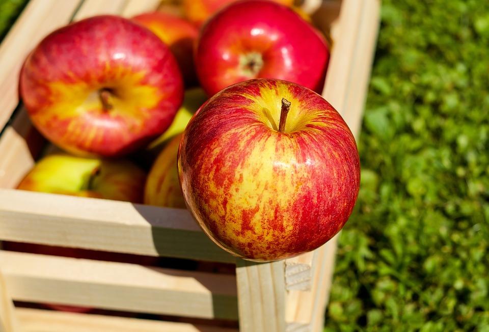 तुम्ही दिवसातून 2-3 सफरचंद खात असाल तर संपूर्ण दिवसभर तुमच्या शरीराला आवश्यक असलेला आयर्न या सफरचंदातून पुरवला जातो.