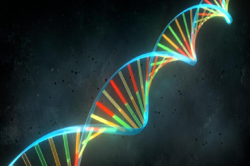 मानवी शरिरातील हार्मोन्सवर सर्वात जास्त प्रभाव 'ऑक्सीटोसिन रिसेप्टर' या जीन्सता असतो ही बाब या रिसर्चमध्ये समोर आली. याच कारणामुळे लग्नानंतर काही दिवसातच नवरा-बायकोंची वागणूक बदलते.  हार्मोन्सचं प्रमाण कमी-जास्त होताच मनाचं संतुलन बिघडतं आणि त्यातून निर्माण झालेला तणाव अनेकदा रागाच्या स्वरूपात नवरा बायकोवर किंवा बायको नवऱ्यावर काढते.