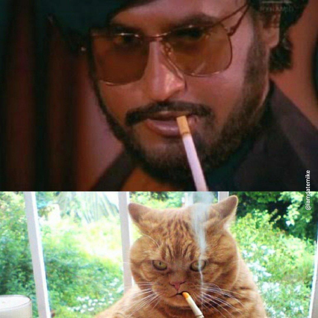 हा फोटो पाहून तर तुम्हाला हसू आवरणार नाही. रजनीकांत यांची सिगरेट ओढण्याची ही स्टाईल या मांजरीनं हुबेहुब आजमावली आहे.