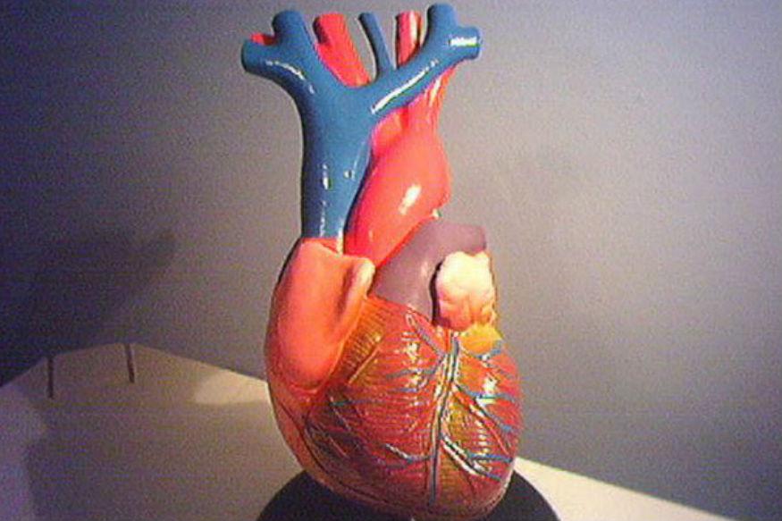सद्याच्या घडीला जगात सर्वाधिक मृत्यू हे हृदयाशी निगडीत आजारांमुळे होतात. आणि व्यक्तीचा मृत्यू केव्हा झाला हे एक संशोधकच सांगू शकतो. ही सर्व तथ्य msn.com ने सुद्धा प्रसिद्ध केली होती.