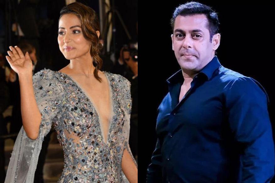 Cannes 2019 : हिना खान ड्रेसवरून ट्रोल झाल्यावर भडकला सलमान खान
