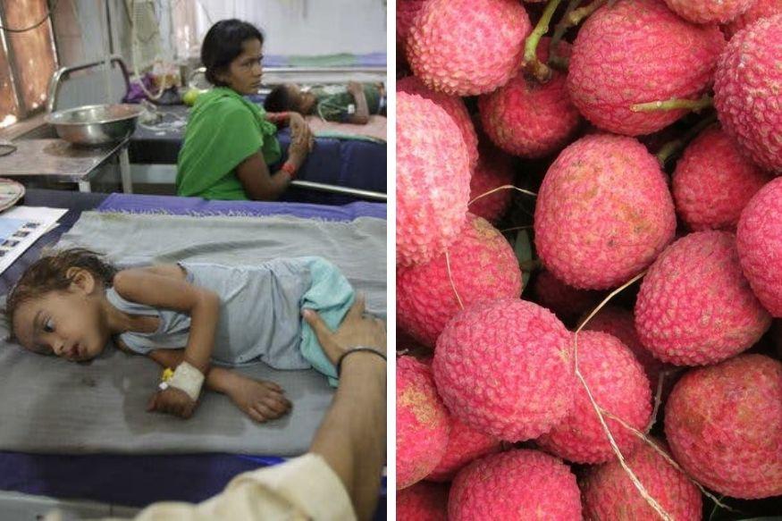125 मुलांचा जीव खरंच लिची खाल्ल्याने गेला का? फळं खाताना घ्या 'ही' काळजी