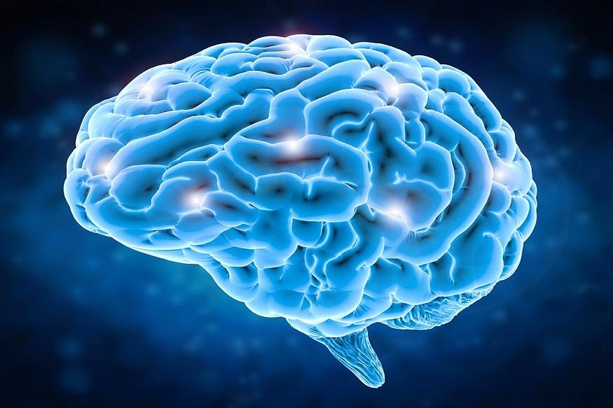 मेंदूचं कार्य सुरळीत सुरू ठेवण्यासाठी भेंडी उपयुक्त आहे. त्यामुळे लहान मुलांच्या मेंदूच्या वाढीसाठी त्यांना भेंडी खाऊ घालावी.