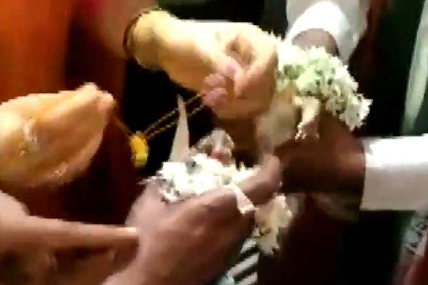 पावसासाठी लागलं चक्क बेडकाचं लग्न, पाहा VIDEO