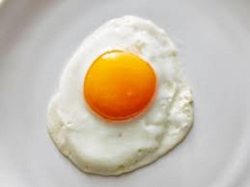 अंड्याच्या पांढऱ्या भागात 12 टक्के प्रोटीन असतं तर पिवळ्या बलकात 16 टक्के प्रोटीन असतं.