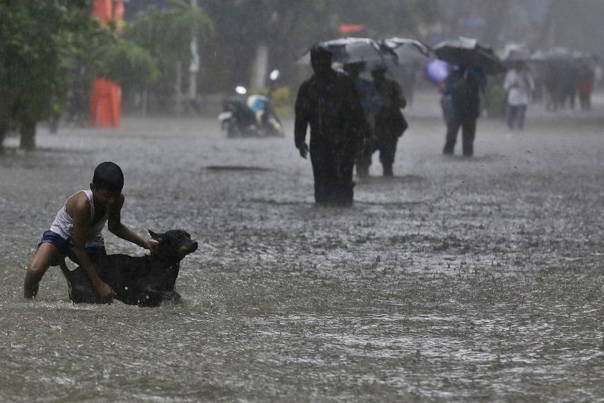 महाराष्ट्राला मुसळधार पावसाने झोडपलं, जगबुडी नदीला पूर आल्यामुळे मुंबई-गोवा महामार्ग ठप्प