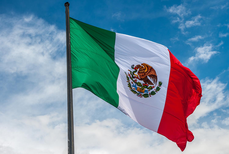 प्लॅस्टिक निर्यातीत मॅक्सिको देश नवव्या स्थानावर आहे. या व्यवसायात जागतिक बाजारपेठेत या देशाची 2.5 टक्के भागीदारी असून यातून देश 2 अरब डॉलर कमवतं.