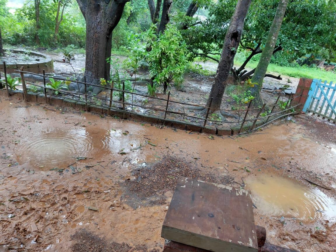 आज ठाणे, पालघर, रायगड, नाशिक, पुणे, सातारा जिल्ह्यात रेड अलर्ट जारी करण्यात आला आहे. भारतीय हवामान खात्याने या 6 जिल्ह्यात अतिमुसळधार पावसाचा इशारा दिला आहे. या ठिकाणी 204 मिमीपेक्षा जास्त पाऊस पडू शकतो.
