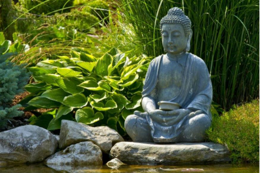 Feng Shui Tips For Happiness and Money: लोक आपल्या घरी धनधान्य आणि आनंदासाठी फेंगशुईशी निगडीत अनेक गोष्टी ठेवण्याला प्राधान्य देताना दिसतात. फेंगशुईच्या टिप्स वापरून तुम्ही वास्तु दोष काही प्रमाणात दूर करू शकता.