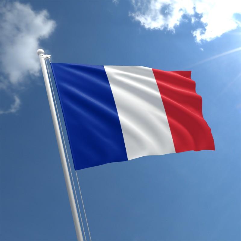 प्लॅस्टिक निर्यात करणाऱ्या देशांमध्ये पाचव्या स्थानावर आहे फ्रान्स. या व्यवसायात जागतिक बाजारपेठेत या देशाची 3.8 टक्के भागीदारी आहे.