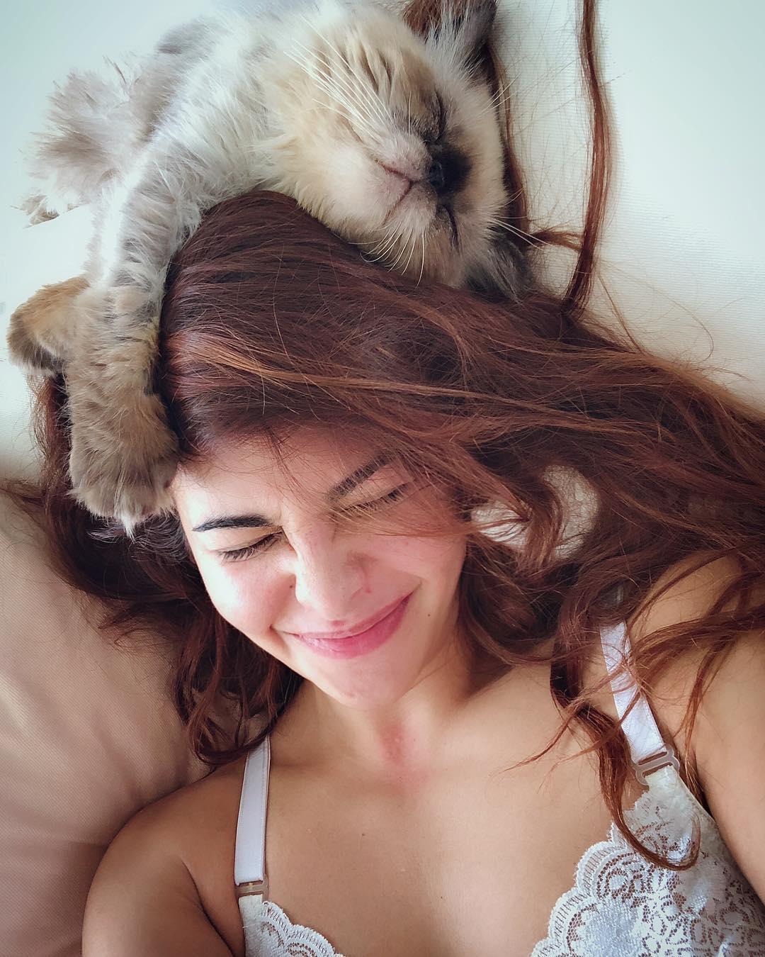 जॅकलीन फर्नांडिसकडेही एक गोड मांजर आहे. (फोटो - Instagram)