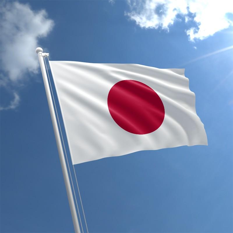 आठव्या स्थानावर जपान हा देश आहे. वर्षाला जपान प्लॅस्टिक निर्यात करून सुमारे 2.2 अरब डॉलर कमवतं.